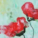 zwei rote Mohnblüten von Antje Strang