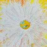 Margaritenblüte von Antje Strang